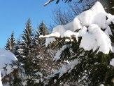 Klingenthal – Schneelandschaften 12