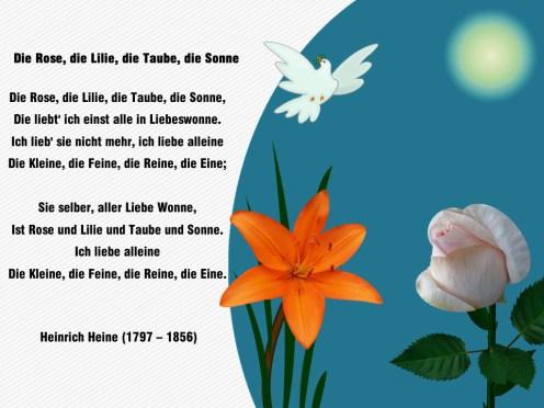 Die Rose,die Lilie, die Taube, die Sonne – Heinrich Heine