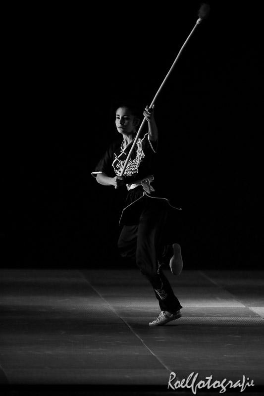 Gevechtskunsten Budo Ryo 2015 - roelfotografie-1837