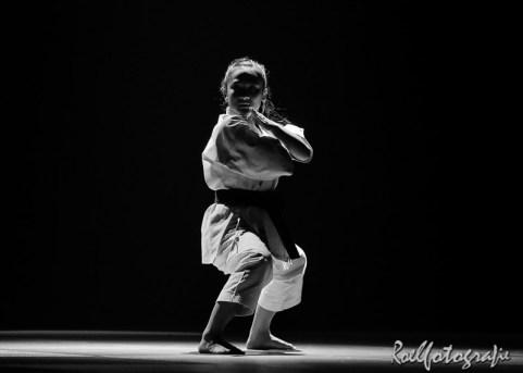 Gevechtskunsten Budo Ryo 2015 - roelfotografie-1987