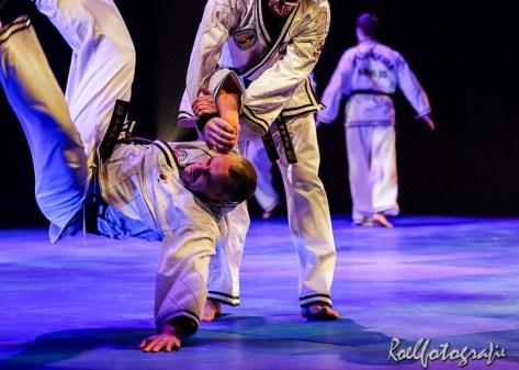 Gevechtskunsten Budo Ryo 2015 - roelfotografie-2179
