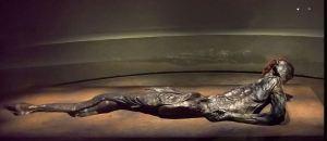 Grauballemanden, Danmarks bedst bevarede moselig, der i 1952 blev fundet i Østjylland. Fundet dateres til 300-200-t. f.Kr. Grauballemanden er udstillet på Moesgaard Museum.
