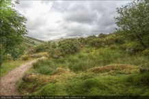 england2013-wistmanswood-3429mantiuk06