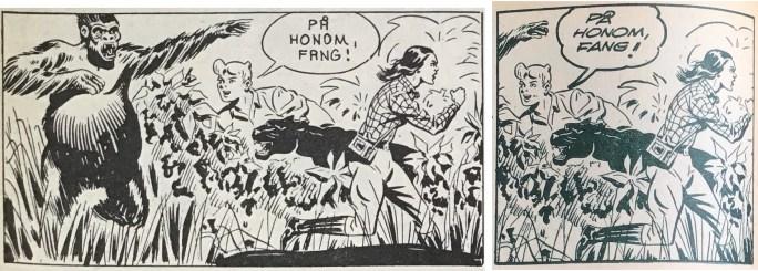 Tidningssidorna ovan är också ett exempel på hur vissa serierutor är beskurna i Bob och Frank