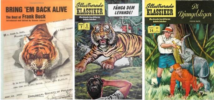 Boken 'Bringing 'em Back Alive' av Frank Buck blev tecknad serie i Illustrerade klassiker nr 7, Den vilda leoparden i nr 29, och På djungelstigar i nr 74. ©Buck/IK