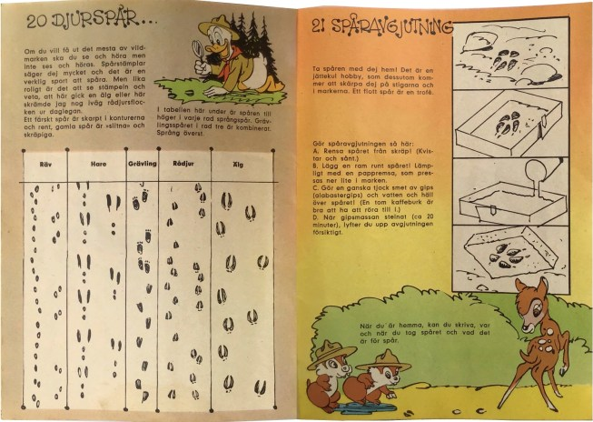 Gröngölingens handbok Sidan 20-21: Djurspår, Spåravgjutning. ©Hemmets Journal