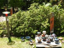 festival-of-pots-and-garden-art-otaki-jan-2017-0028