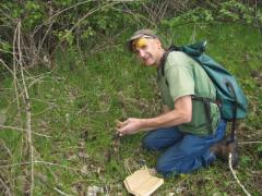 Neil finding four morels in a dependable spot.