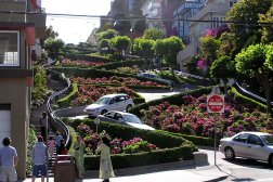 Lombard Street is a beautiful neighbourhood in San Francisco, and the sending road is beautifully landscaped.