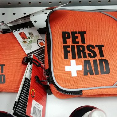 Pack a Dog First Aid Kit for your road trip in case something happens to your pet.