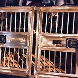 Crash-resistant-dog-crates-for-safe-travels