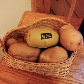 Mccain-potato-world-unusual-museum