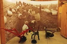 Potato-World-Harvest-museum