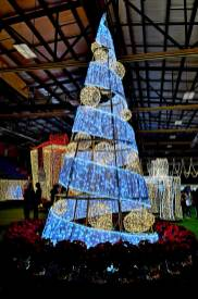Christmas-Tree-Lights-Halifax-roguetrippers