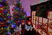 Roguetrippers-Christmas-Displays-Mahone-Bay-Nova-Scotia