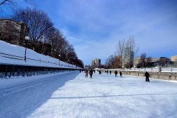 Rideau Canal Skateway Ottawa Winterlude