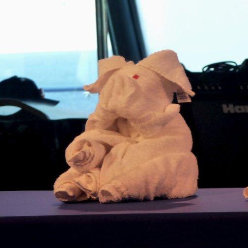 towel-folding-demonstration-aboard-cruiseship