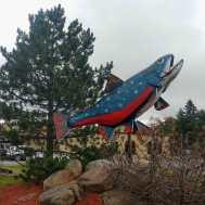 Big-Trout-Sault-Ste-Marie-Frontier-Village