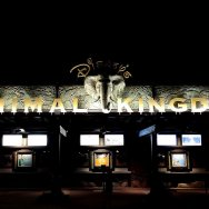 Walt Disney World Animal Kingdom on roguetrippers last visit