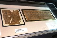 Fragments-of-Funerary-Papyrus-Egypt-Mummies