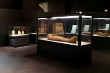 Egyptian Mummies and the Eternal Life