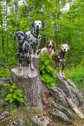 Hiking-on-vacation-with-dogs-Randoms-Travels