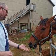 Jason-Dick-Feeding-horses-Groovy-Goat-Roguetrippers