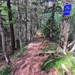 Hiking-Amherst-point-migratory-Bird-sanctuary