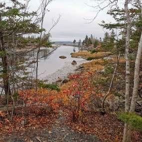 Gorgeous-views-Nova-Scotia-halifax-hiking