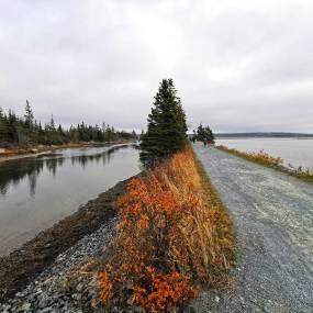 Salt-Marsh-Halifax-area-hiking-Roguetrippers-nova-scotia