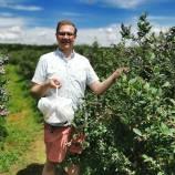 Nick-kulnies-TnT-Berries-Blueberry-Picking