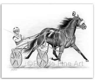 The Pacer : Standardbred Horse Art & Harness Racing Art