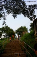 There are about 105 steps