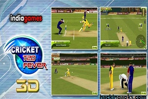 T20 Cricket Fever Apk