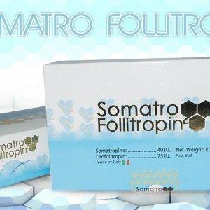 SOMATRO FOLLITROPIN 12