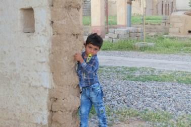 yazidi4