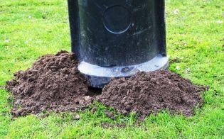 Mole tipping a rubbish bin