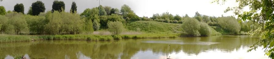 Panorama of the pond