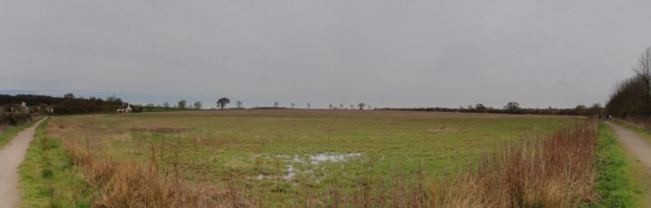 Brancliff field