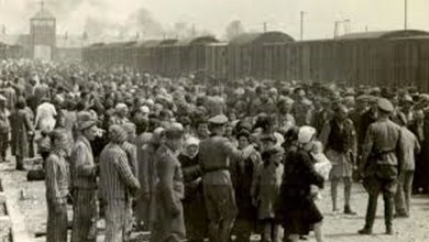 Photo of AUSCHWITZ 28.01.2020