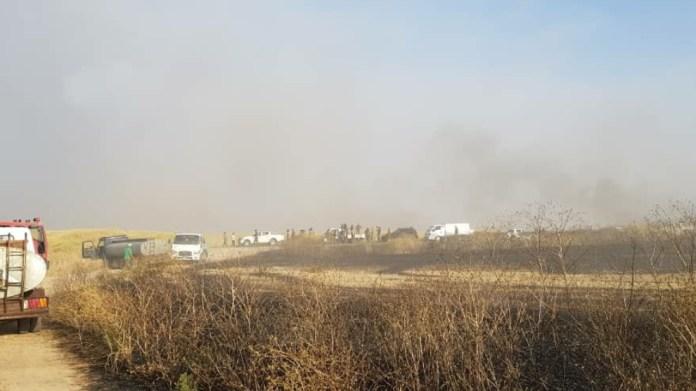 30 000 hectares de terres incendiés dans la région de Cizîr