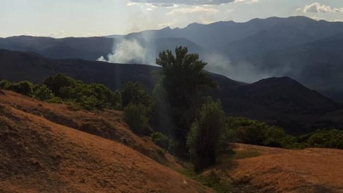Les bombardements turcs déclenchent un incendie dans les forêts de Hozat