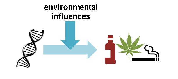 gene-environment-interaction