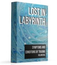 LOST-LABYRINTH-SMALL