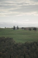 Val D'Orcia 2013 26