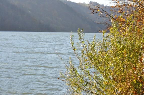 HERBST_Roland Wegerer_Along the Danube_14