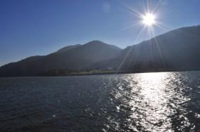 HERBST_Roland Wegerer_Along the Danube_21