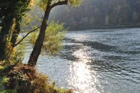 HERBST_Roland Wegerer_Along the Danube_26