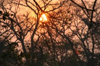 zambia 2011 283