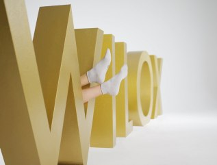 Wilox Fotoshooting im Fotostudio